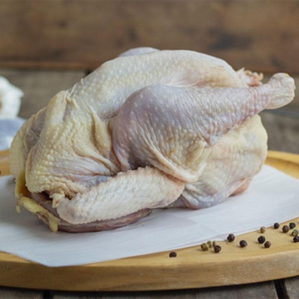 Large Stew Hen